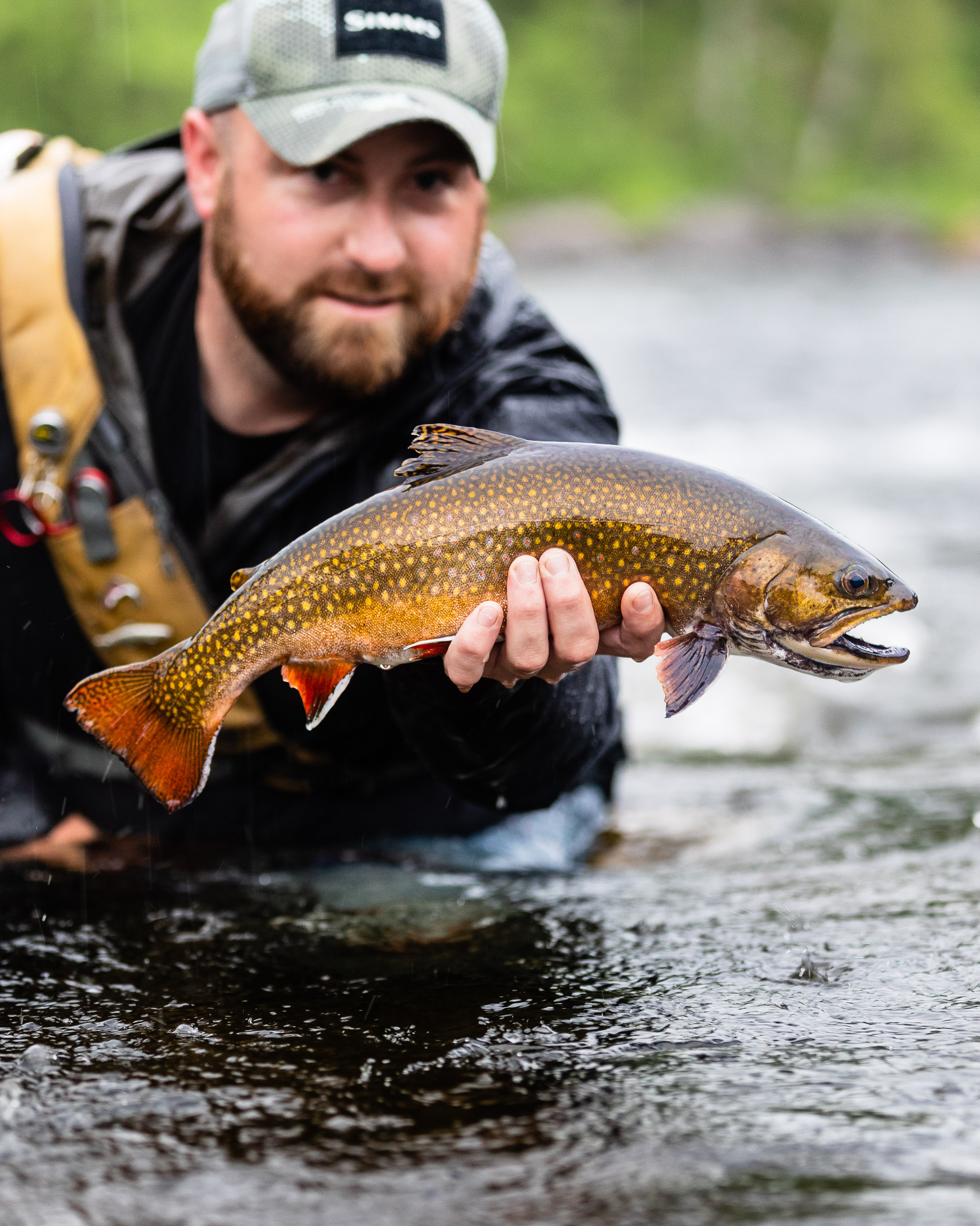 Fly Fishing Maine's Rapid River   Eastbound and Trout - photo#1